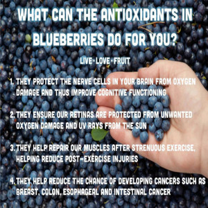 Blueberries Uses