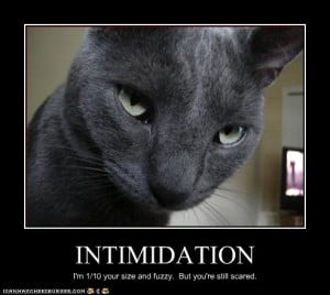 Intimidation is a skill reflecting your ability to frighten or taunt ...