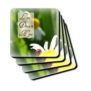 Love Dream Hope Ladybug on a Daisy Inspirational Quotes - Coasters