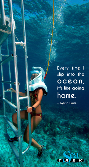 ... the amazing experience available around the world www sea trek com