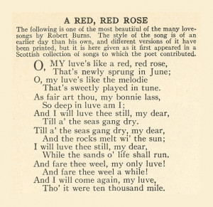 666 Red Rose Poem
