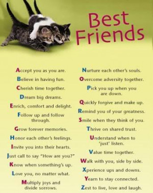 35 Ideal Best Friend Quotes