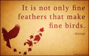 ... intelligent, beauty, fine, feather, bird, being a good person, Aesop