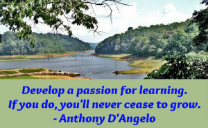Learning And Development Quotes Education quotes