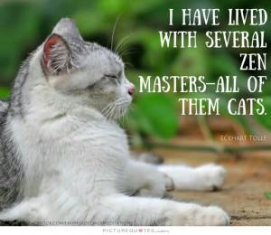 Cat Quotes Zen Quotes Eckhart Tolle Quotes