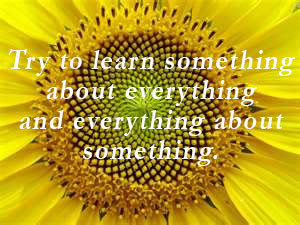and everything about something. | Personal Transformation Quote ...