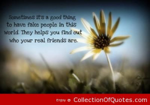 ... They-Helps-You-Find-Out-Who-Your-Real-Friends-Are.-Picture-Quotes.jpg