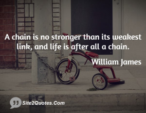 chain is no stronger than its weakest link, and life is after all a ...