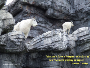 Mountain Goats with Quote by lesleyhat
