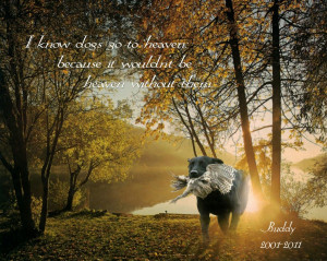 Displaying 20> Images For - Dog Memorial Quotes...