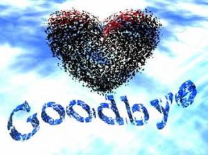 3428485834_good_bye_quotes_and_sayings_xlarge.jpeg