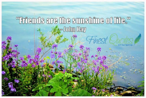 """Friends are the sunshine of life."""" – John Hay"""