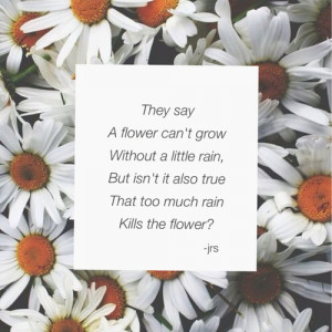 ... tags for this image include: sad, quotes, flower, rain and flowers