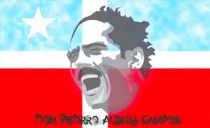 Don PEDRO Image