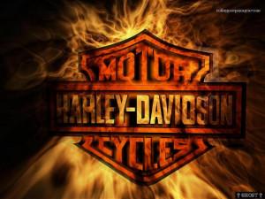 Fondos de Escritorio: Harley-Davidson