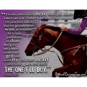 The horse may be Western, but the quote applies to any discipline..and ...