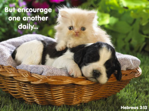 Therefore encourage one another and build each other up , just as in ...