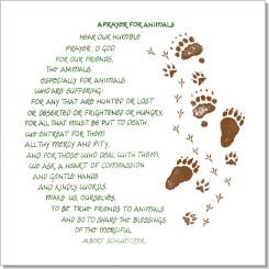Prayer for Animals, Albert Schweitzer, Calligraphy Art Plaques ...