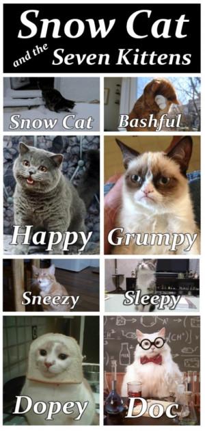 Snow-Cat-And-The-Seven-Kittensfunny-animals-grumpycat-487x1024.jpg
