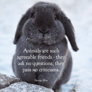 Famous People Quotes • Pet Quotes