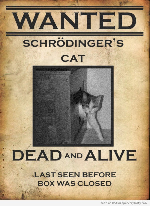 schrodinger-cat-wanted-poster-dead-alive-box.jpg