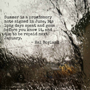 deep freeze forms ice on a window with the hal borland quote, Summer ...