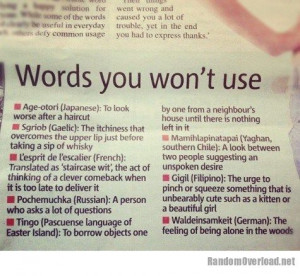 ... words that don't quite make it through English translation filters