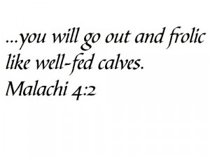 you will go out and frolic like well-fed calves. Malachi 4:2 - Wall ...