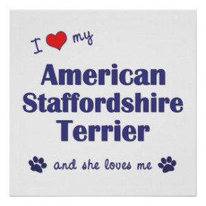 Love American Staffordshire Terrier (Female Dog) Print