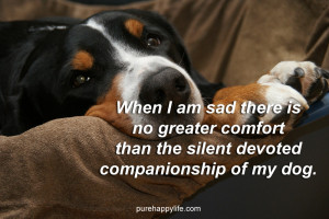 ... is no greater comfort than the silent devoted companionship of my dog