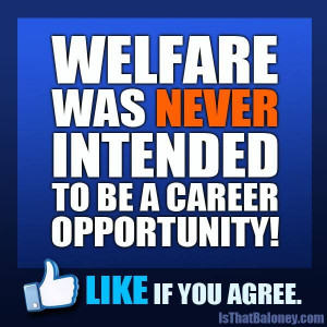 Welfare is not a