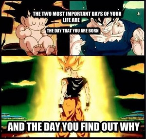 DBZ The most epic day of your life is when you go sort saiyan for the ...