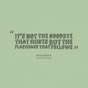 Quotes Picture: it's not the goodbye that hurts but the flashback that ...
