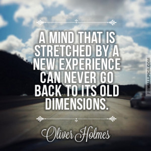 holmes quotes