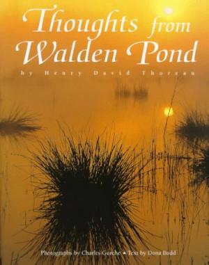 occasionally thoreau you marvel at walden thoreaus walden i walk