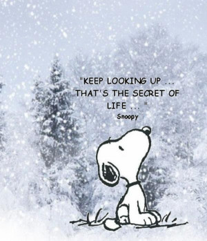 Winter, quotes, season, sayings, positive, snoopy