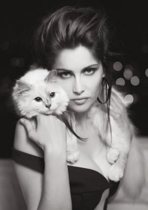 Casta Choupette by Karl Lagerfeld: Cats, V Magazines, Fashion, Karl ...