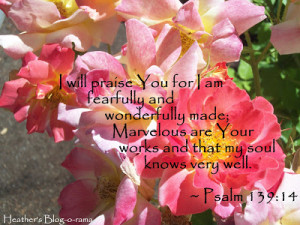 Bible Verse regarding Friendship