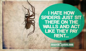 hate how spiders just sit there on the walls and act like they pay ...