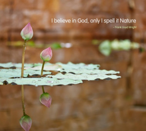 believe in God, only I spell it Nature.