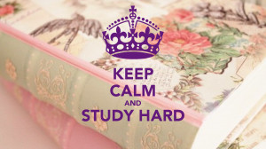 Study Hard Michiyo Deviantart