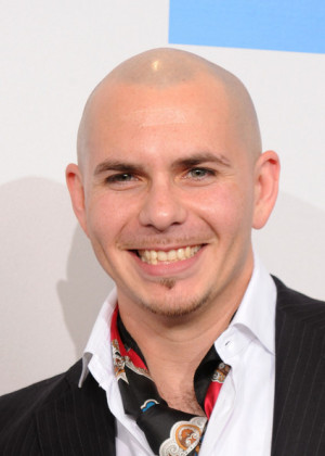 Pitbull Singer Pitbull poses in the press room during the 2010 ...