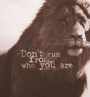 fight your battle #lion #roar