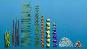 cleanup-flowers08bk2.JPG