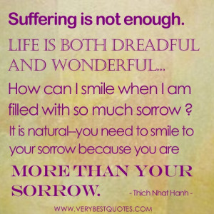 Thich Nhat Hanh Quotes – suffering is not enough