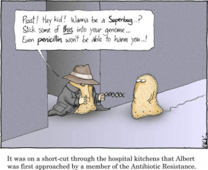 It was on a short-cut through the hospital kitchens that Albert was ...