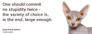 Ignorance Quote: One should commit no stupidity twice - the variety of ...