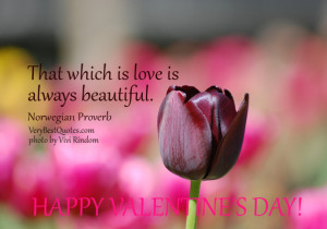 Inspirational Love Quote Picture for Valentine's Day