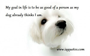 ... in life is to be as good of a person as my dog already thinks I am