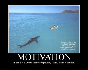 How about this shark swimming behind you?